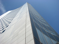 looking   up_03