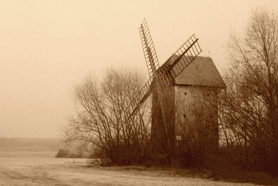 dissipating fogs by wings… ( mgły skrzydłami rozganiać... )