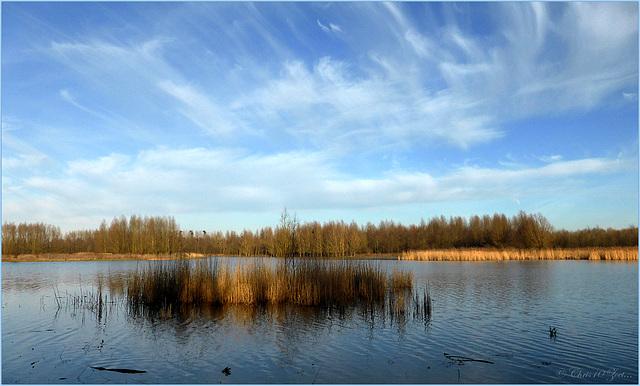 Winter Scenery...