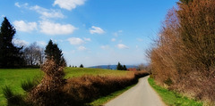 Sur la route du printemps...