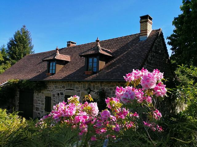 Le joli mois de Mai / Pretty May [ON EXPLORE]