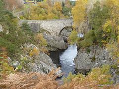 Dulsie Bridge - Autumn Colours