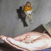 The Gazebo Robin