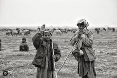 Shepherds in northern Afghanistan