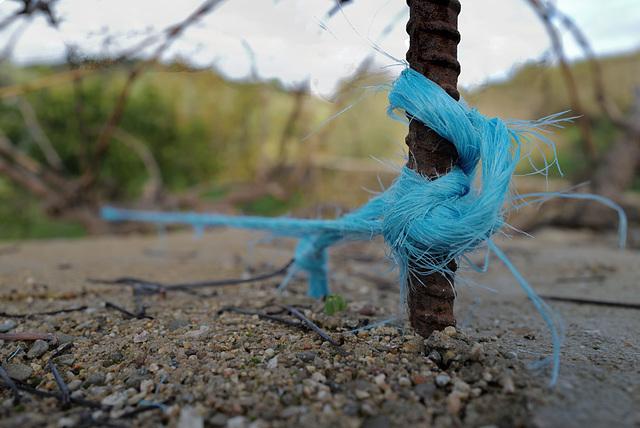Blue rope, always around!