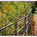 Happy Herbst Fence