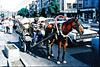 Istanbul.  Street photo... ©UdoSm