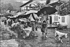 Cérémonie des offrandes à Luang-Prabang (1991)
