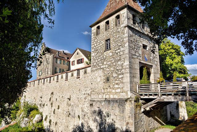 Schloss Laufen Rheinfall Schweiz