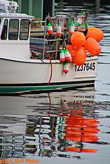Oh Buoy, Harbor Reflections