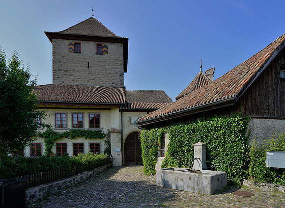 Schloss Hegi, Winterthur
