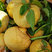 Sorrento GR Street 3 Lemons