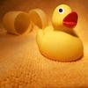 Wie aus dem Ei gepellt... das Gelbe vom Ei.