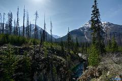 Deepest Rockies