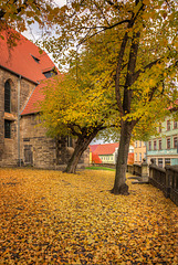 Arnstadt. Kirchhof der Bachkirche. 201610