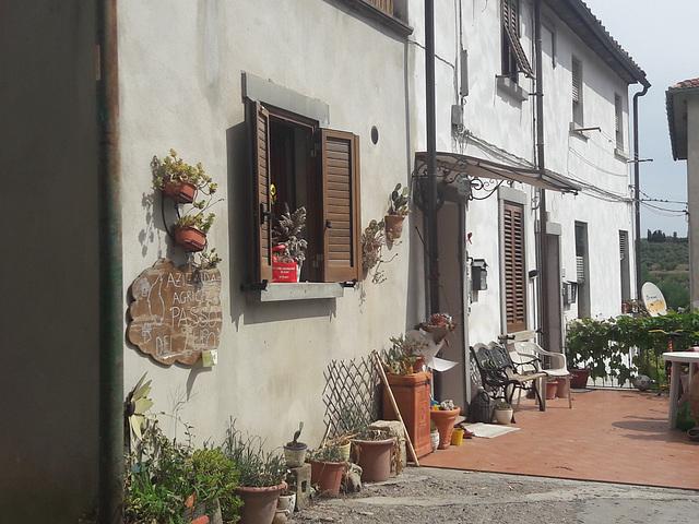 Soianella..piccolissimo borgo con tanti fiori e persone anziane che con orgoglio  cercano di mantenere bello il loro Borgo!