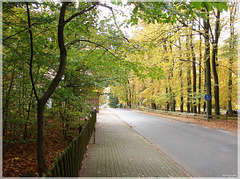 Oerrel - Kohlenbissener Straße