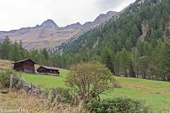 Alm im Kristeinertal - Mountain pasture in the valley Kristeinertal
