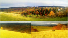 Collage of light and  colours of autumn