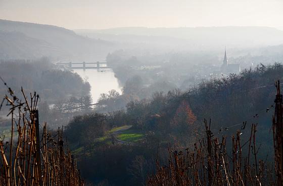 Main und Wein - River Main and wine