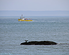 Lobster Boats and Rocks (2)