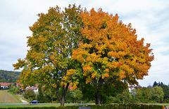 Autumn in Bartholomä