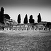 Pompeii GR 2