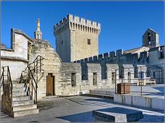 Avignon : La parte alta del palazzo dei Papi