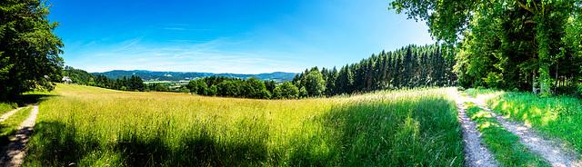 Blick vom Pfeiferberg in das Dreisamtal