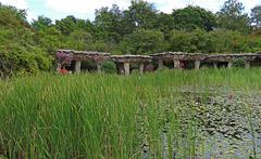 Britzer park and gardens