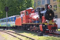 Der Zug fährt am Bahnhof Wyschenka ab