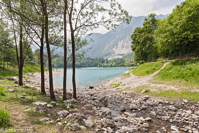 Bäume bewachen den Lago di Tenno