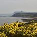 North Yorkshire Coast at Scarborough