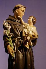 Cathédrale Saint-Sauveur (6)