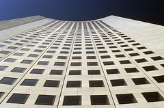 looking   up_02