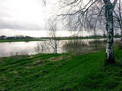 20150402 0014H w[D~SHG] Weser, Hochwasser, Rinteln