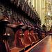 Erfurter Dom. Prächtiges Chorgestühl. ©UdoSm