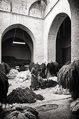 dyers of Marrakech