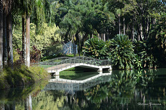 Inhotim Natural Park -  Brazil