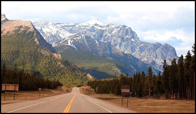 David Thompson Highway, Alberta