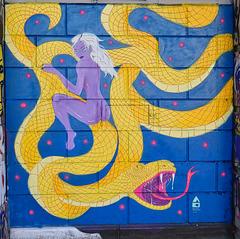 1 (45)a...austria vienna graffiti