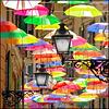 Genova : Ombrelli e Lampioni