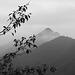 Baimashan  : Misty day