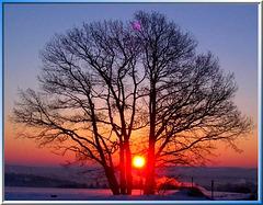 Sonnenuntergang im Spätherbst... Sunset in the late autumn... ©UdoSm