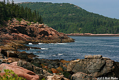 Towards Otter Cove, Acadia National Park