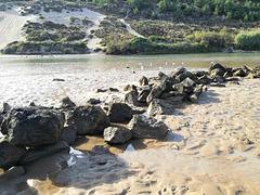 Salir River mouth