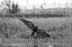 Wicker Bird