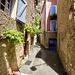 Moustiers-Sainte-Marie (25)