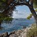 A Cavtat view