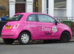 Daisy Sales - 28 December 2016